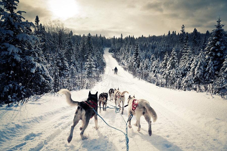 12 2 - Отдых в Карелии зимой - природа и достопримечательности