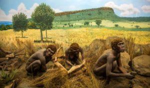 """Philippine Hominins 752x440 300x176 - Бестселлер """"Сапиенс"""", Юваль Ной Харари: стоит ли верить этой книге?"""
