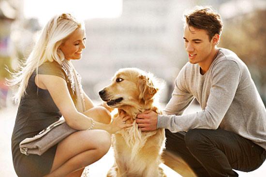 4ba8e6321f75e7bbc814b119cbd19498 - Собачьи секреты: восприятие информации животными