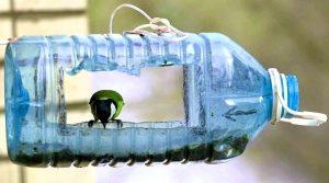Как сделать кормушку для птиц из разных материалов