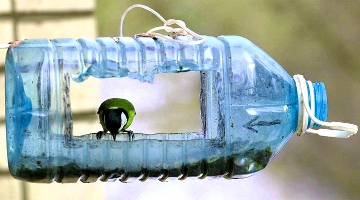 kak sdelat kormushku dlya ptits svoimi rukami 27 - Как сделать кормушку для птиц из разных материалов
